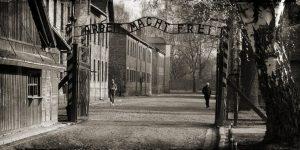 Auschwitz Tausta